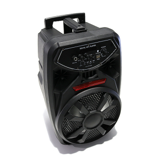 Zvucnik PK09L Bluetooth veliki crni