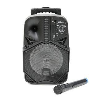 Zvucnik WF805 Bluetooth veliki crni